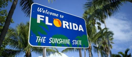 Florida Alcohol Laws (Sales, Driving, Transportation) - tripsavvy.com via cc pexel