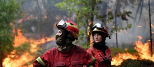 Gli incendi in Portogallo hanno provocato 62 vittime