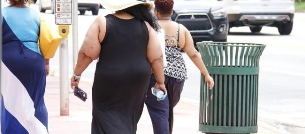 Obesity Alert: US has highest number of overweight individuals -Pixabay
