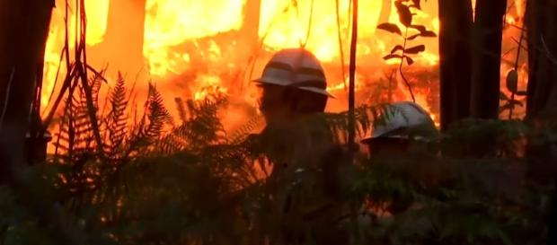 Photo Portugal forest fire screen capture from YouTube video / RT News