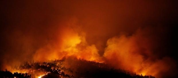 Raging forest fires kill 62 in Portugal - thenational.ae