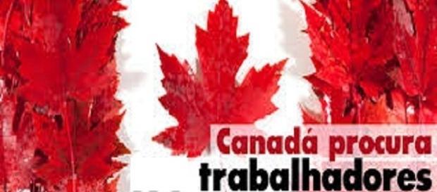 Vagas de emprego no Canadá, saiba mais sobre o mercado de trabalho atual no país.