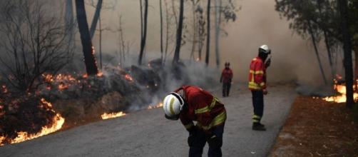 La rápida propagación del fuego sembró el terror en Portugal
