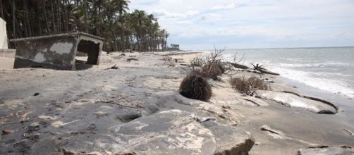 Tabasco pierde hasta 6 metros de costa al año por cambio climático ... - unam.mx
