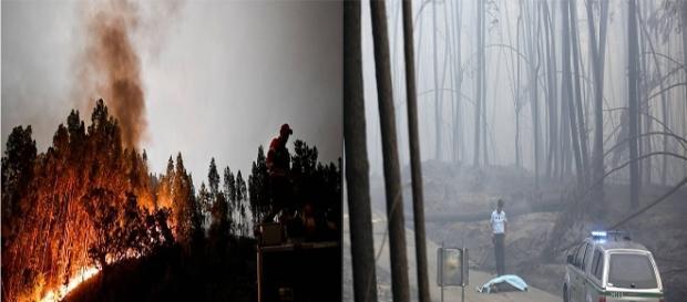 Bombeiros combatem fogo em incêndio de grandes proporções em Portugal