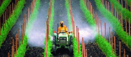 La Comisión Europea permite la exposición a peligrosos compuestos ... - unidadylucha.es