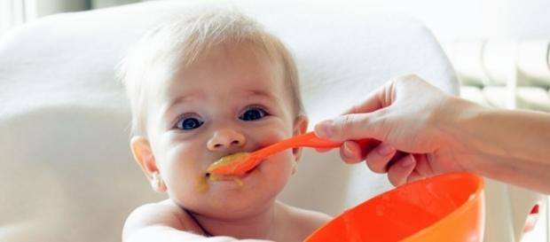 Baby food samples contained 20 percent lead according to a new study.