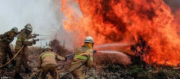 Pompierii luptă cu flăcările într-o pădure din Capela Sao Neitel, Alvaiazere, din centrul Portugaliei - Foto: Daily Mail ( © EPA)