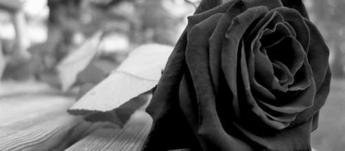Blogueira perde a vida em acidente com sifão de chantilly