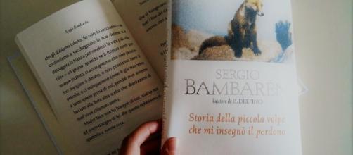 """""""Storia della piccola volpe che mi insegnò il perdono"""", S. Bambarèn."""