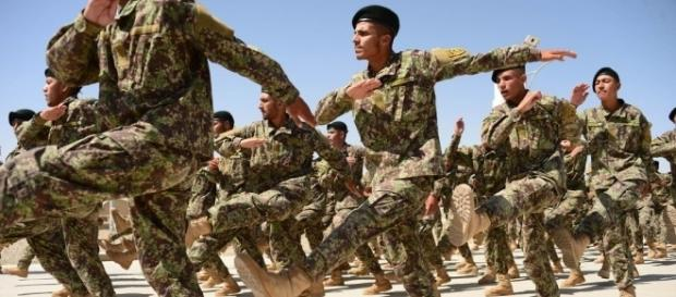 A Dumb Decision': U.S. Said to Waste $28 Million on Afghan Army ... - nytimes.com
