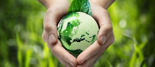 Evlon biodegradable packaging compostable environment bakery - bakeryandsnacks.com