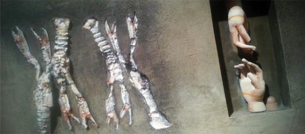Paco Rojas, Surreal y abstracto, en el Museo de san ta cruz