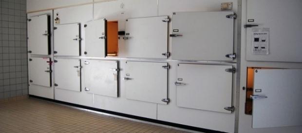 Photo morgue via Wikimedia by P.J.L Laurens / CC BY-SA 3.0