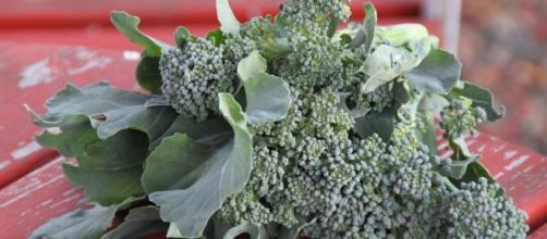 I broccoli potrebbero contenere il segreto per vincere il diabete