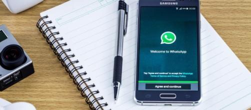 Come personalizzare le notifiche su WhatsApp | Libero Tecnologia - libero.it