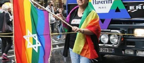 Gay Pride parafe in Paris (TarValanion wikimedia commons)