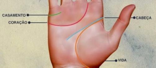 Confira segredos de sua personalidade escondidos na palma da sua mão (Foto: Reprodução)