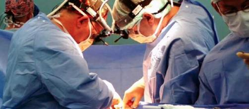Researchers believe they solved the problem of organ rejection. - wikimedia.org