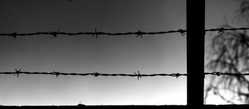 U.S. to start constructing prototypes of border wall / Photo via Mitchell Haindfield, Flickr