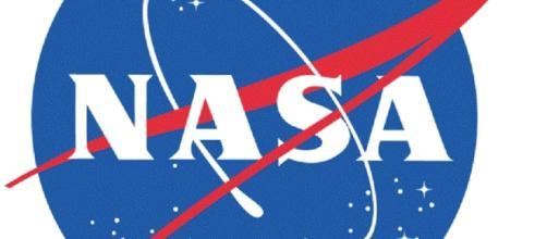 Official NASA Logo (Courtesy NASA)