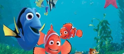 Finding Nemo | Pixar Wiki | Fandom powered by Wikia - wikia.com