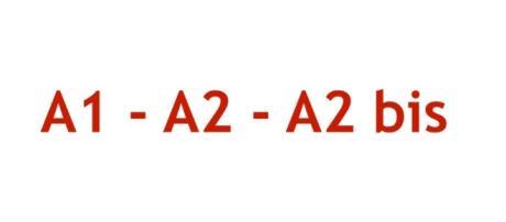 Modelli A1, A2 e A2 bis, quale modulo usare e dove inviare