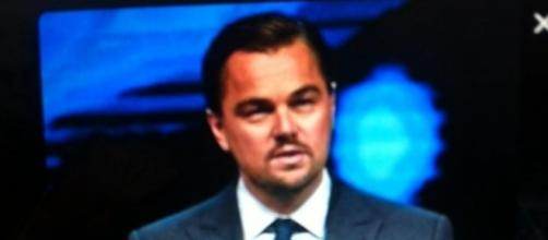 El actor se ha mostrado preocupado por la posible extinción de la vaquita marina (via Twitter - @LeoDicaprio)