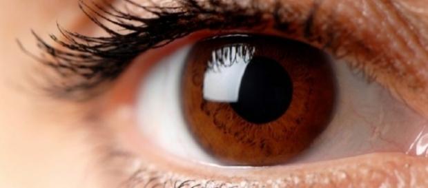 Entenda por que os olhos castanhos são tão especiais