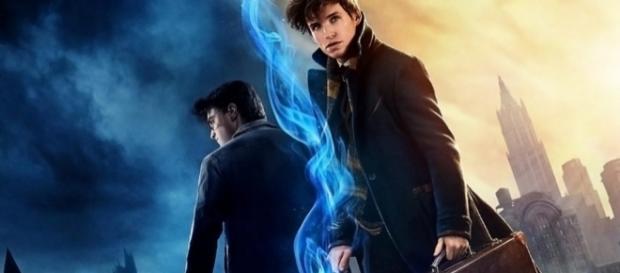 Qual personagem de Harry Potter você gostaria de ver em ''Animais Fantásticos e Onde Habitam''? Foto: Divulgação/Warner