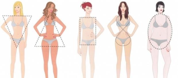 Seu formato de corpo e sua personalidade; conheça os detalhes por trás dele