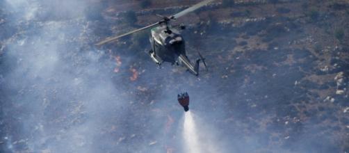 Incendi Sud Italia, ettari di boschi e macchia mediterranea vanno in fumo