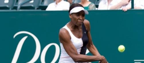 Venus Williams is at fault in the fatal crash that killed a 78-year-old man - Flickr/tlaenPix