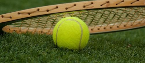 grass tennis court - Photo: Max Pixel (Pentax K10d)