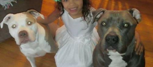 Los perros son parte de la familia y ayudan a tratar los problemas de ansiedad de los hijos de LeMay.