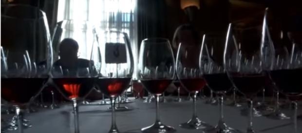 """Pinot Noir"" The Holy Grail of Wine Image - HolyGrailOfWine | YouTube"