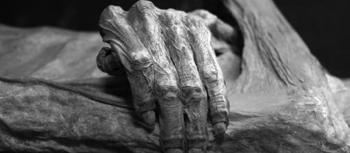 Detail of the Guanajuato mummies, Mexico. Photo taken at Museo de las Momias de Guanajuato by author Tomas Castelazo via Wikimedia Commons