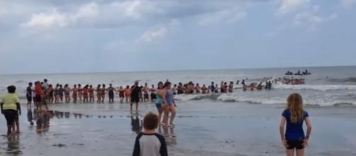 Dozens of strangers form human chain to rescue swimmers at Florida beach (Image Credit: The Last News/Youtube)