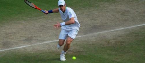 Murray falls to Querrey at Wimbledon / Photo via Carine06, www.flickr.com