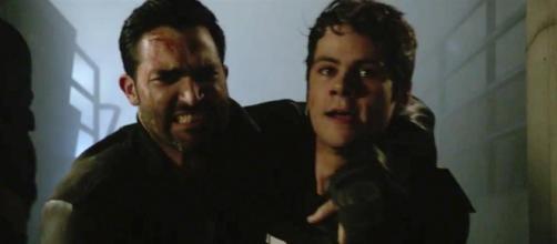 Teen Wolf trailer: Dylan O'Brien, Tyler Hoechlin, more return for ... [Image source: Pixabay.com]