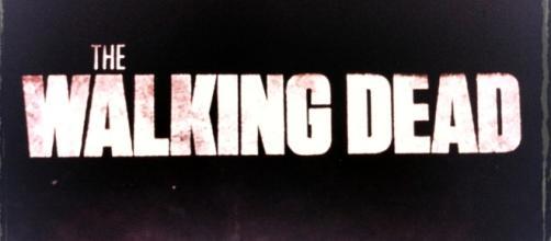 'The Walking Dead' season 8. - image via Podknox on Flickr