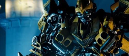 Bumblebee [ Image From CoolestClips4K | YouTube Screenshot ]