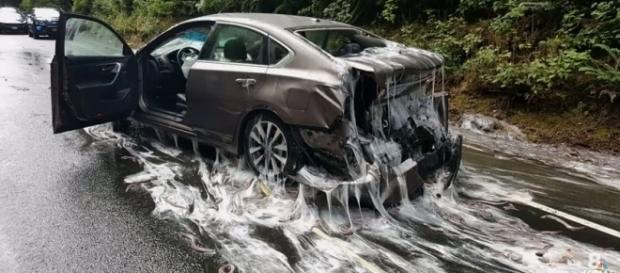 Slime coats a car on US 101. - screen capture from YouTube/KGW News