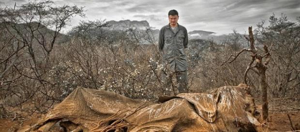 Apocalíptico: Fotos dramáticas de todo el mundo.. - eamosmasanimales.com