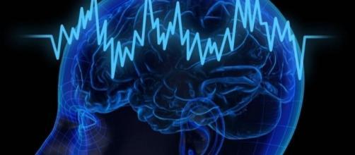 Il cervello di fronte ai pericoli spesso reagisce con decisioni autodistruttive