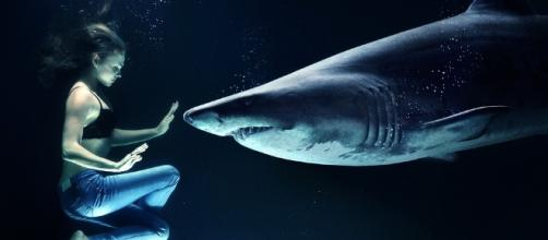 A manipulated image illustrating how fish and human can co-exist.- 5arah via Pixabay