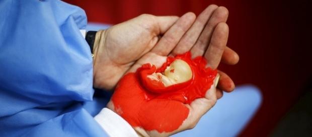 La Cámara Alta decide este martes la despenalización del aborto en Chile