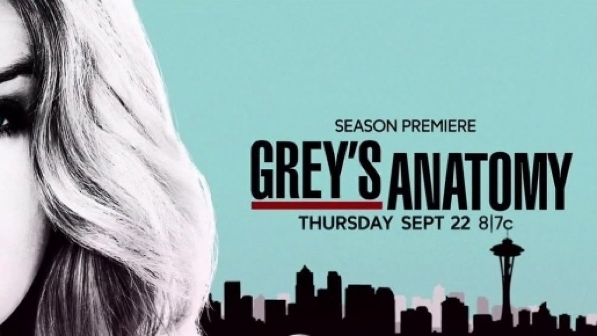 Grey\'s Anatomy\' spinoff: plot, cast and crew details