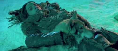 """Smit-McPhee fights for survival in first """"Alpha"""" trailer (Image Credit: news-falls.com)"""