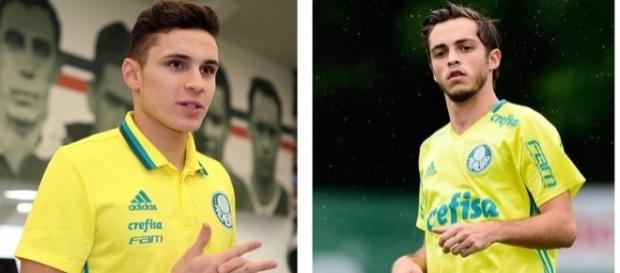 Palmeiras e Vasco ganham reforços. ( Foto: Reprodução)